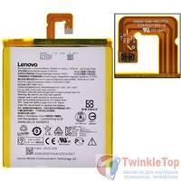 Аккумулятор для Lenovo IdeaTab A7-50 (A3500-FL) / L13D1P31